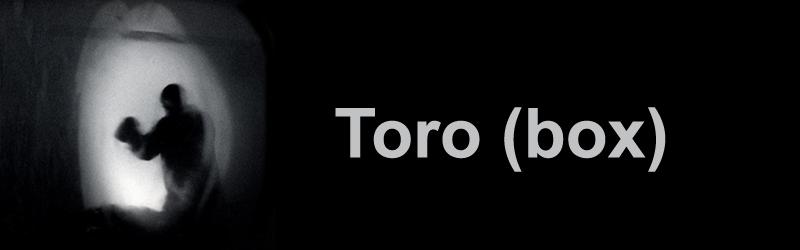 TORO (box)