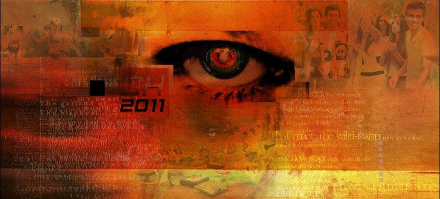 Todo Gran Hermano 2011