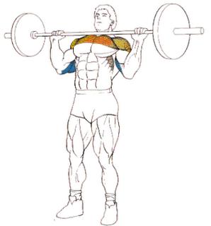 fuerza fisica: