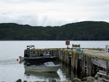 The Wharf in Plate Cove East