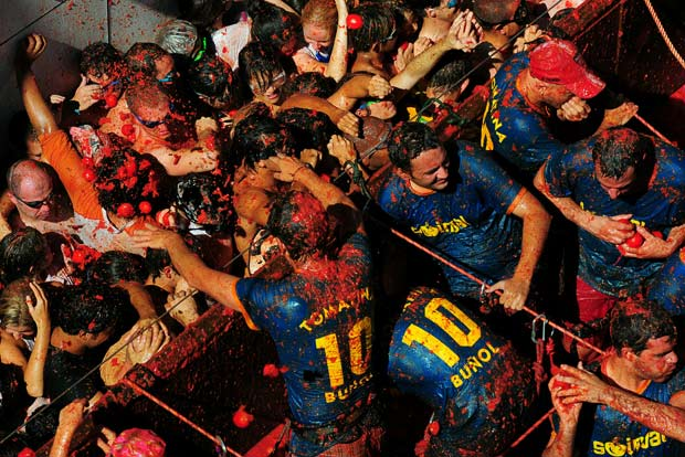 The Tomatina  photos