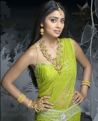 Actress Shriya Saran in Blouse | Shriya Saran Designer Blouses Pics