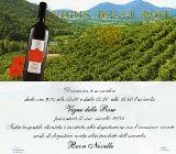 azienda vitivinicola vigne delle rose