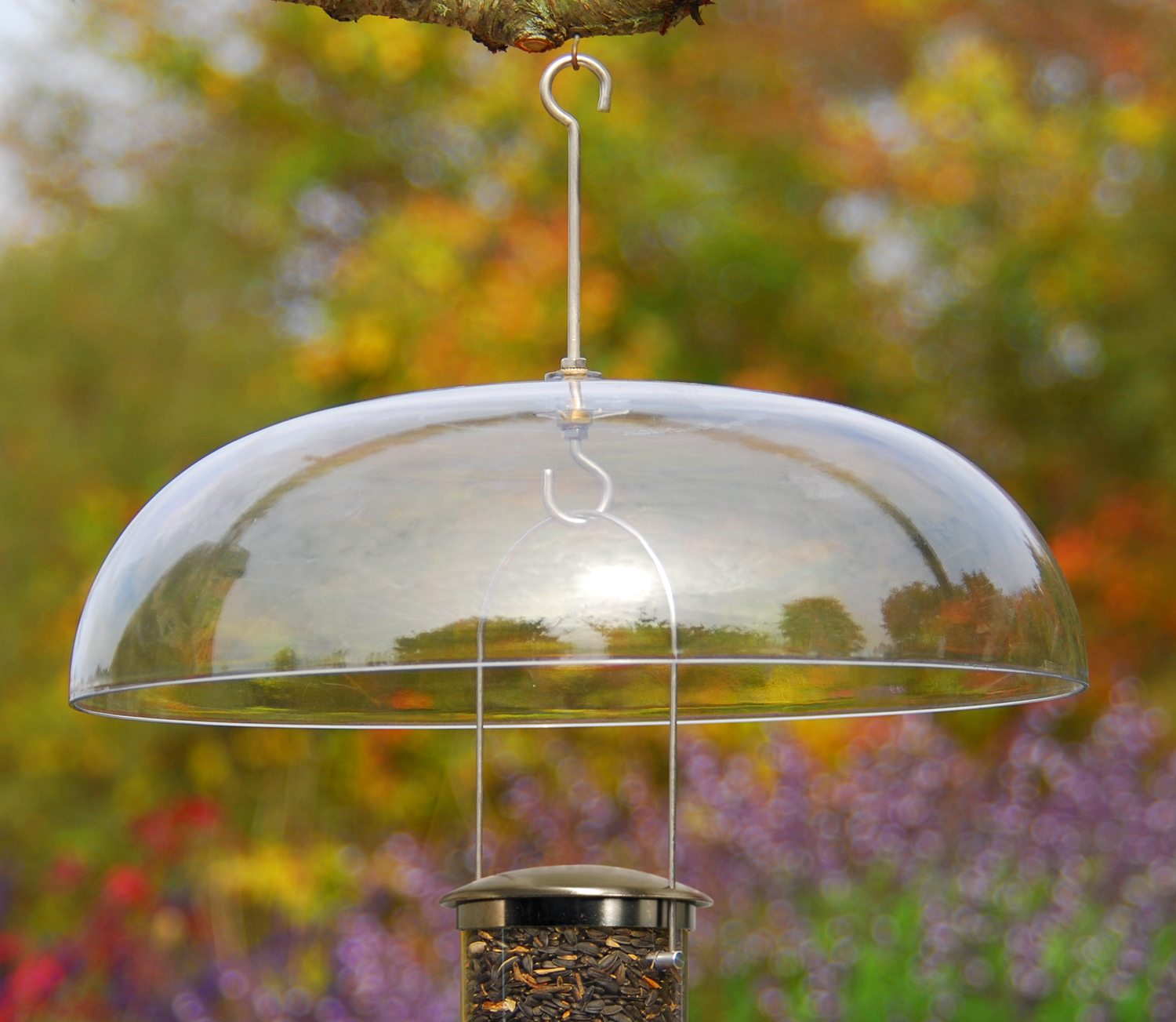 wild birds unlimited discover a refuge in your own backyard