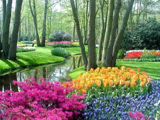Hadith Garden: Do you want to grow plants in Paradise (Jannah) now!