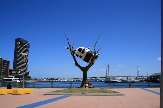 Cow in a Tree, Melbourne Victoria, Australia - © CKoenig