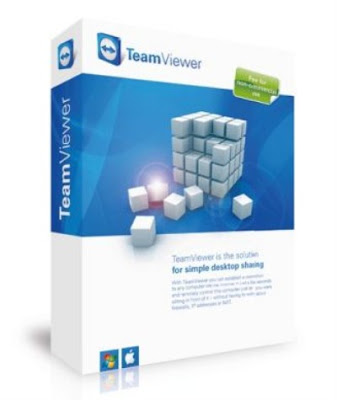 TeamViewer establishes