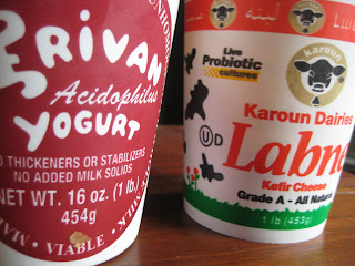 yogurt probiotics