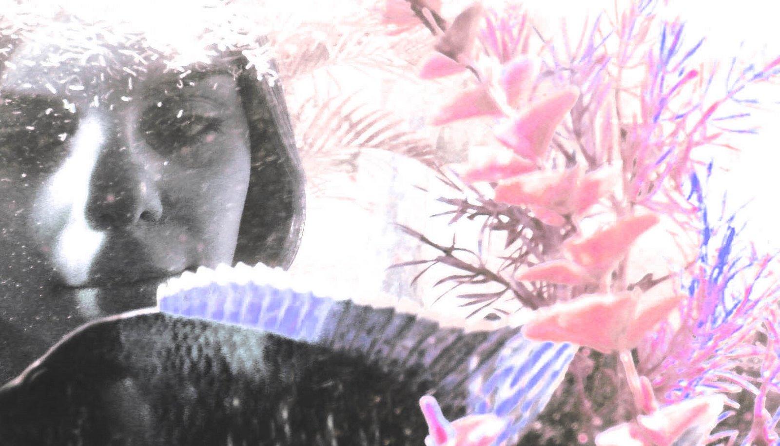 Teresa e o Aquário