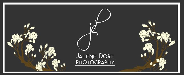 Jalene Dort Photography