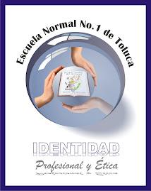 IDENTIDAD PROFESIONAL Y ETICA
