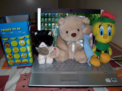 stuffed toys, kitty, teddy bear, tweety bird, Dell XPS M1330 laptop, bear hugs