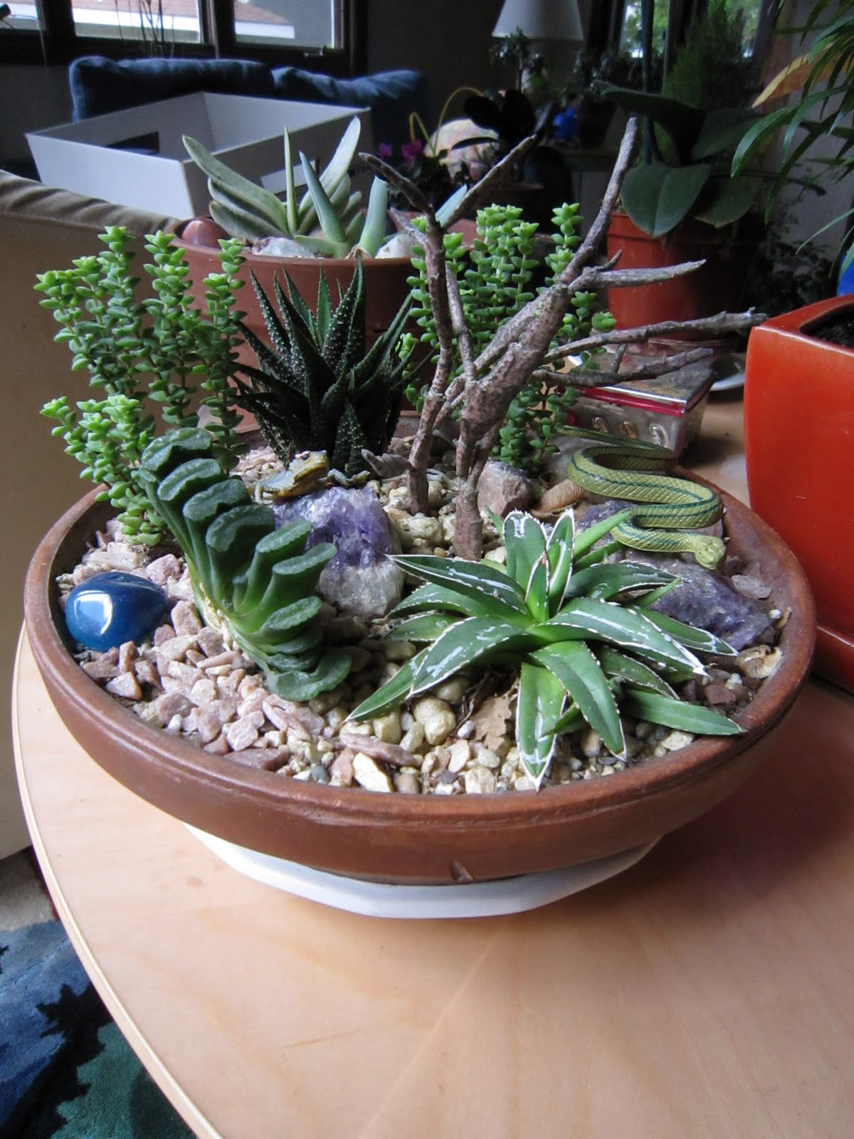 Chuck Does Art Succulent Garden