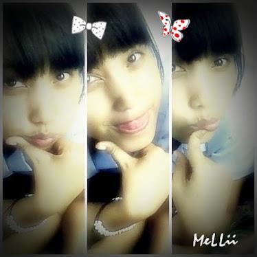 Melii's Diary