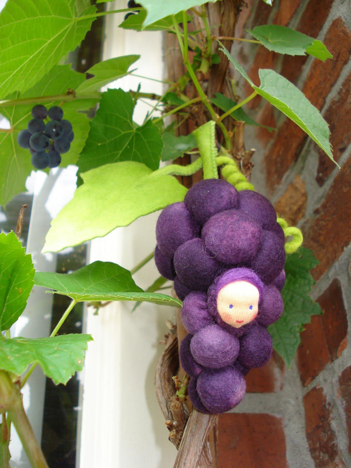 Kleine dingen die 39 t doen druiven - Riet voor struik ...