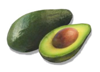 external image avocado.jpg