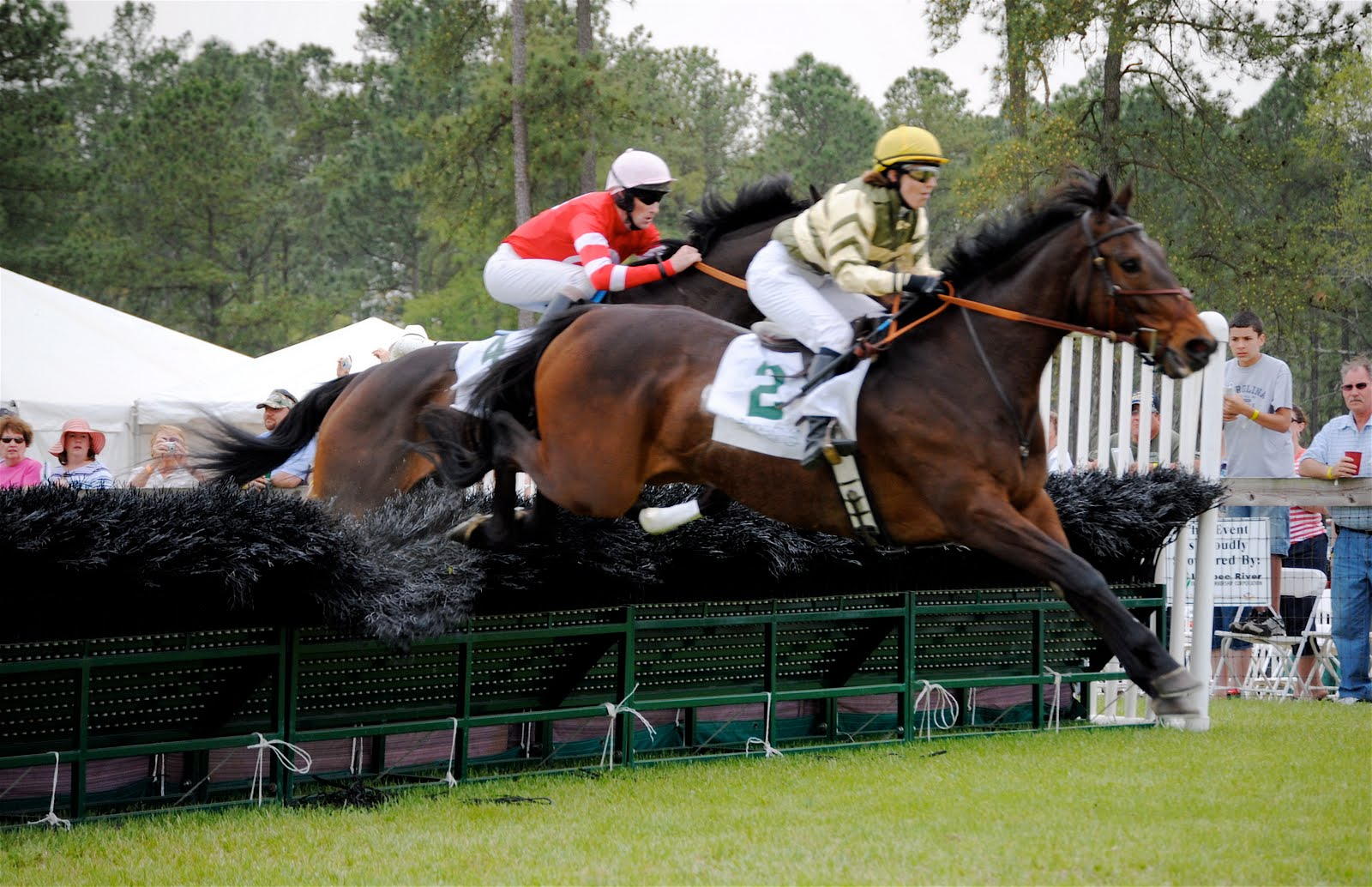 Pinehurst golf equestrian steeplechase racing in the for Steeple chase