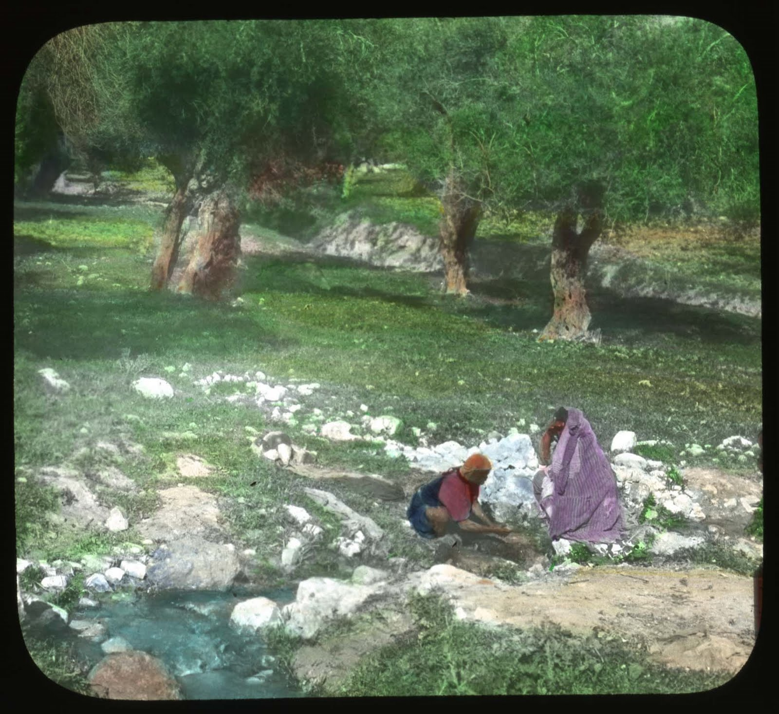 Scenes from Crimea http://michele-dogslife.blogspot.com/2010/04/lantern-slides-of-russian-life-1917.html