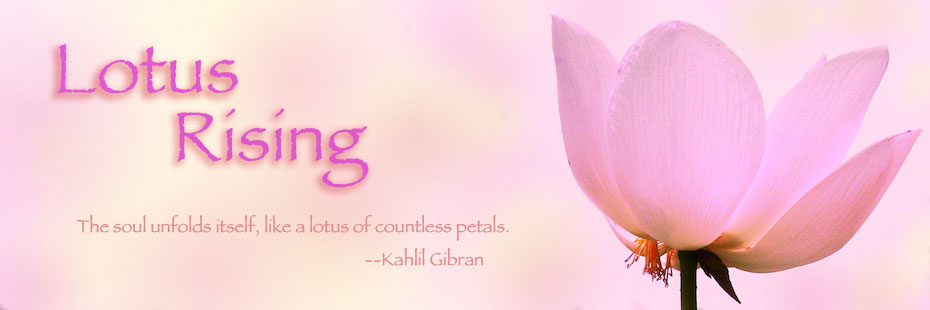 Lotus Rising
