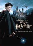 Harry Potter Theme Park Poster