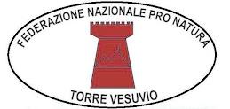 Associazione Torre Vesuvio