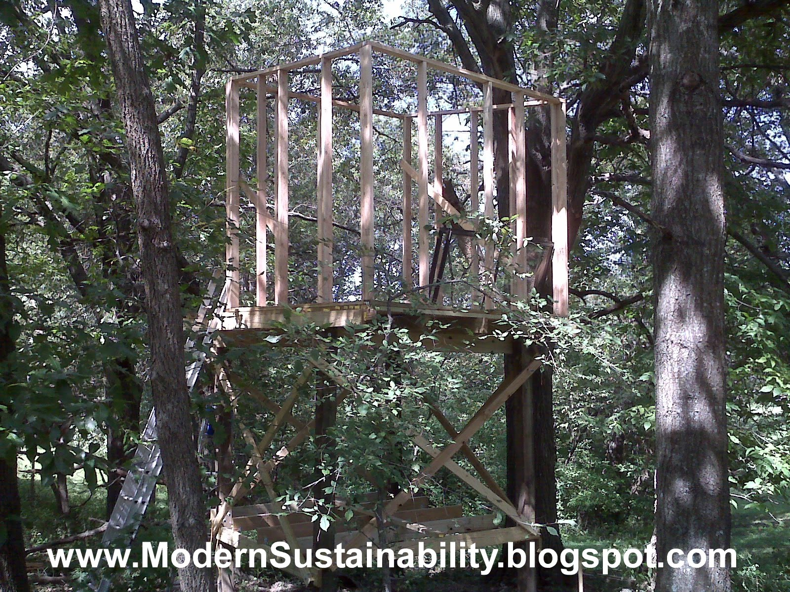 modern sustainability old fashioned methods how to
