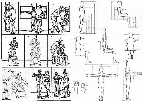 Go design for Medidas antropometricas del cuerpo humano