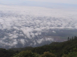 xpdc gunung ledang