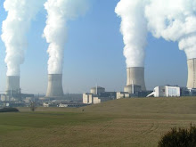 nuclear power plants too risky
