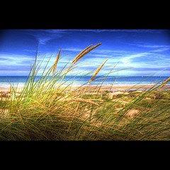 O horizonte se manifesta e a poesia do olhar atento se alastra no imponderável momento da beleza.