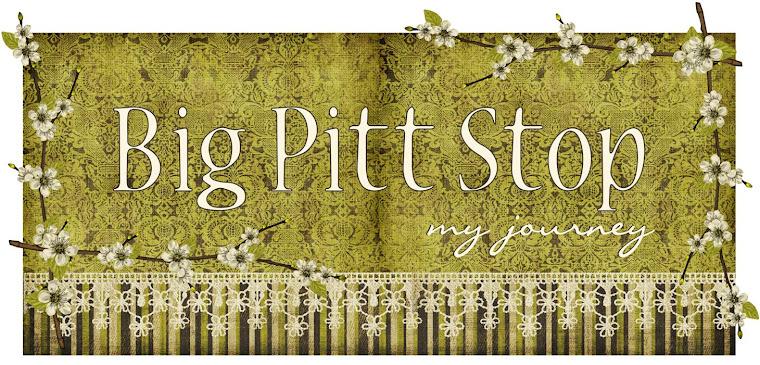 Big Pitt Stop