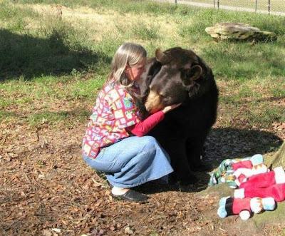 Brothers 05 Foto foto Persaudaraan Antara Beruang, Singa Dan Harimau (Bagaimana Bisa?)