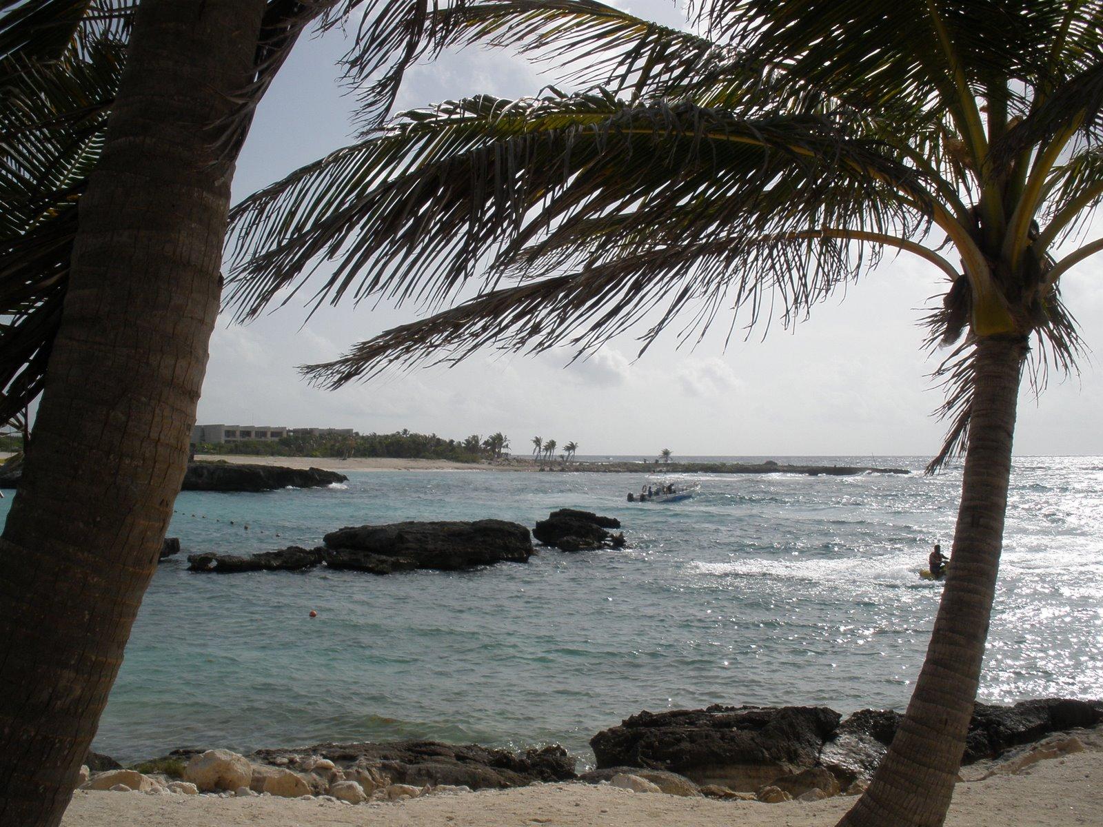 [Beach+photo]