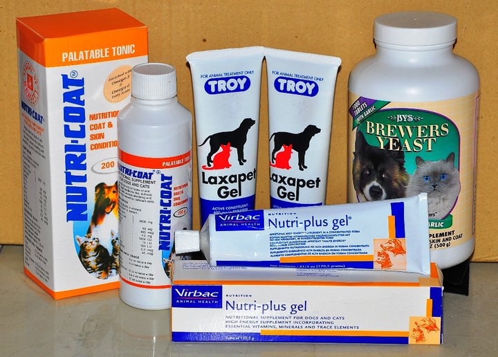 Detomey Petshop PROMOTIONSALESALE CEPAT CEPAT