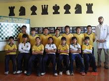 5º Verde Varones (Generacion 2008)