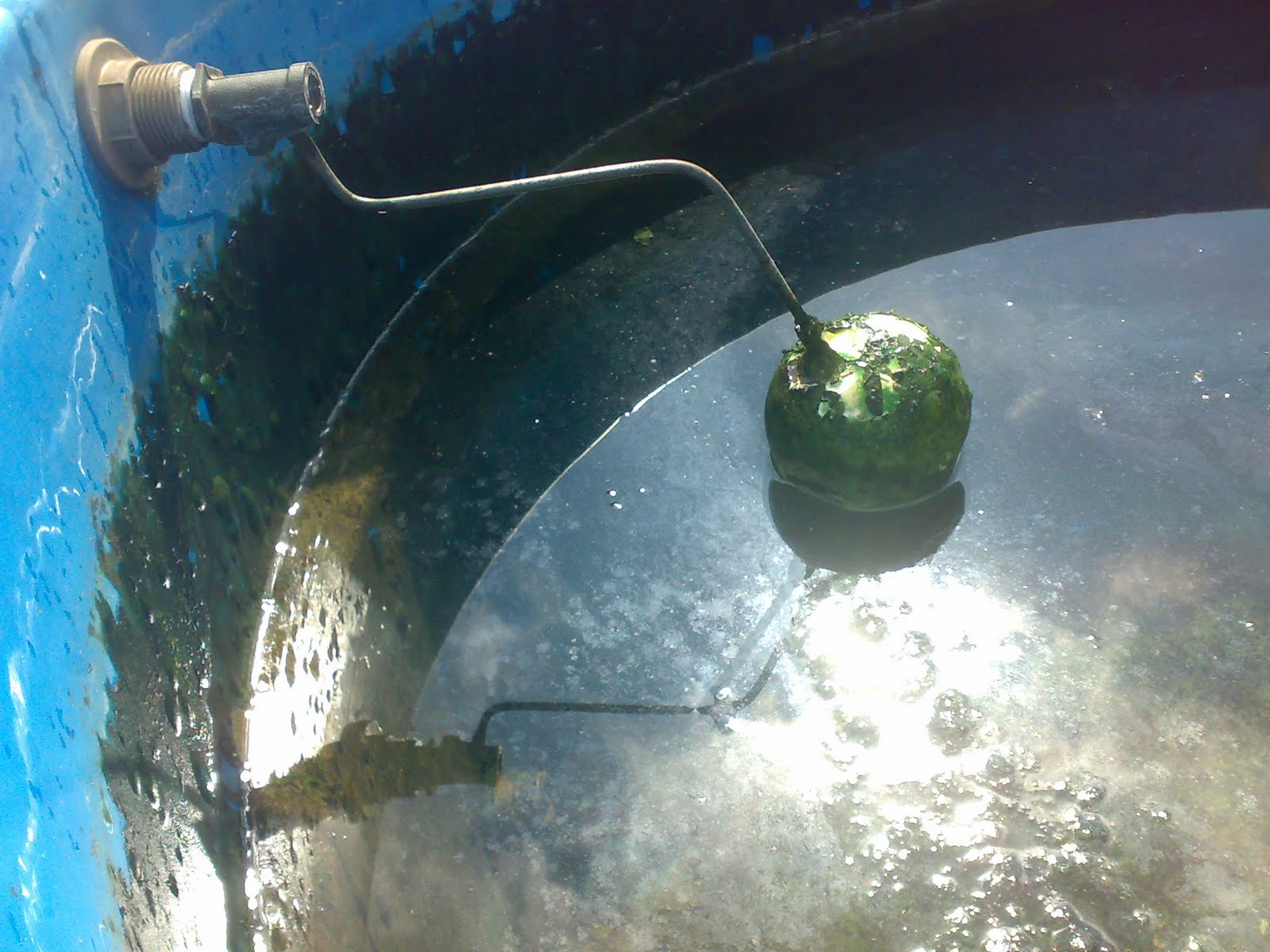 Importância da Limpeza de Caixas D'água #0B8BC0 1600x1200