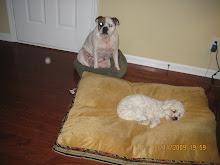 Sadie and Charlie