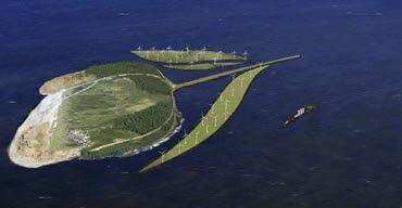 Tulip Island