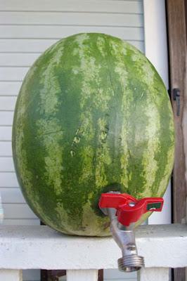 Watermelon faucet