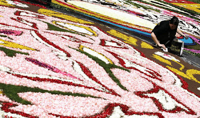Giant floral carpet