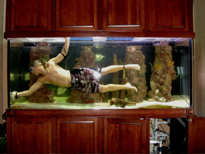 A person cleaning a huge fish tank