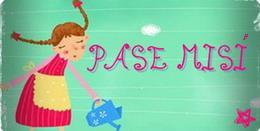 PASE MISI
