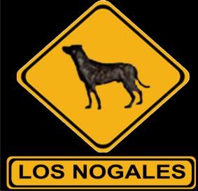 Cimarrones Los Nogales