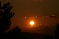 Sombras pirenaicas