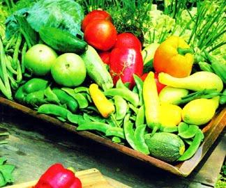 como eliminar pesticidas en frutas y verduras