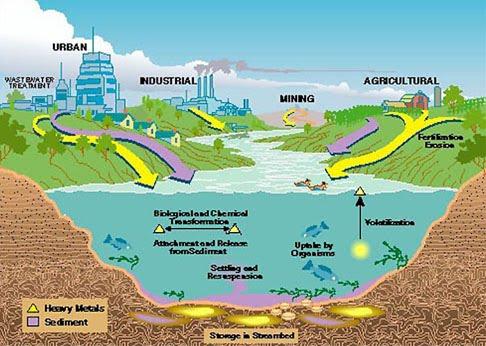ciclo de metales pesados en el agua y aire y tierra
