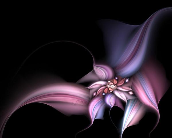 Blossoming Joy