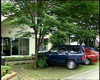 штаб-квартира студии Гибли