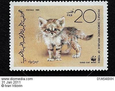 Почтовая марка с барханной кошкой
