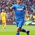 Vedad Ibısevic: Hoffenheim Şovalyesi..